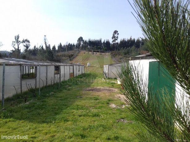 Terreno Agrícola ideal para Agri. Biológica