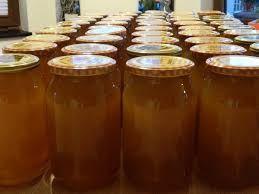 Miód pszczeli 100%