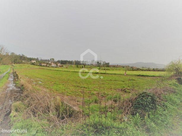 Terreno Agrícola em Fradelos!