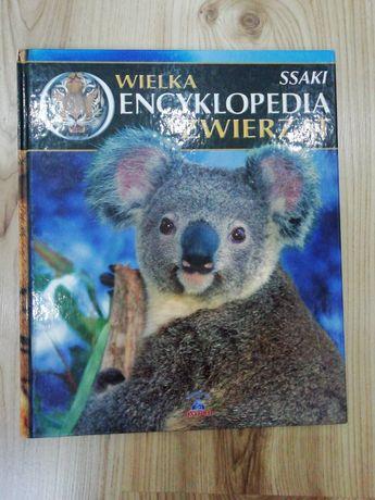 """Książka dla dzieci """"Ssaki"""", Wielka Encyklopedia Zwierząt"""
