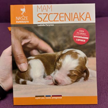 Poradnik dla właścicieli psów i szczeniaków