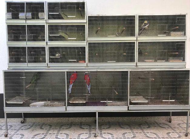 Gaiolas/Viveiros para Pássaros