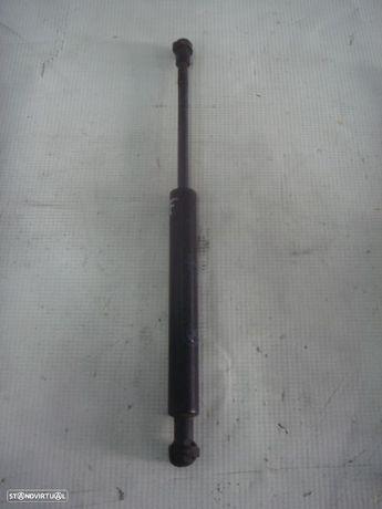 Amortecedor Capot Bmw 3 (E46)