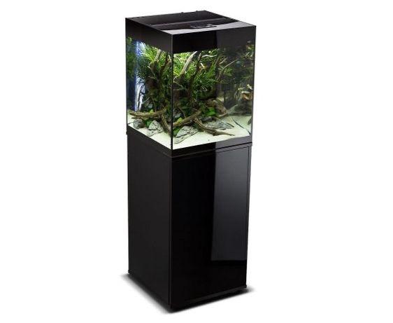 Sprzęt akwarystyczny (Aquael Glossy Cube, chłodziarka, Fluval)