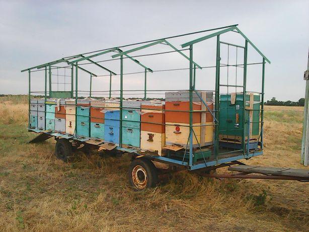 Прицеп для перевозки ульев, пасеки, пчел