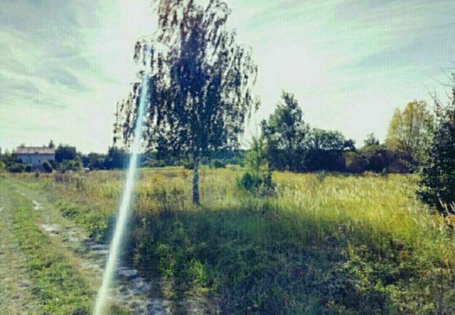 Продам участок в с.Андреевка ( недалеко лес)