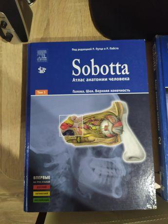Атласы анатомии человека Sobotta