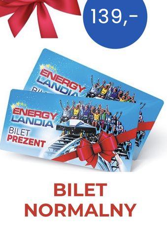 2 bilety normalne Energylandia park rozrywki Zator