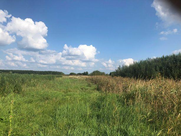 65,91 ha w jednym kawałku - ziemia rolna, łąki.