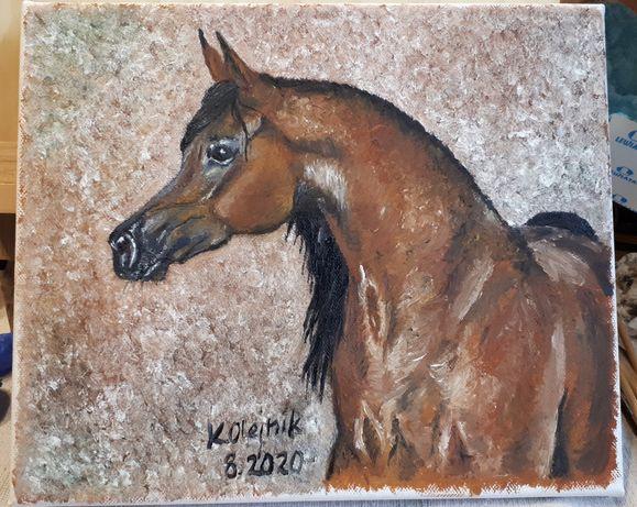 Obraz olejny koń arabski