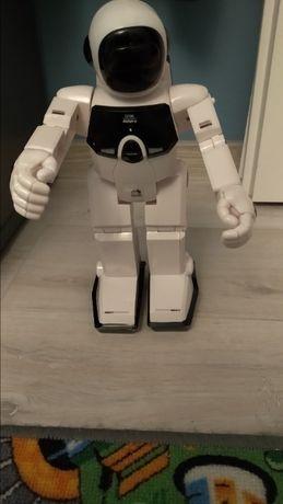 Robot na rolkach, tańczy, jeździ...