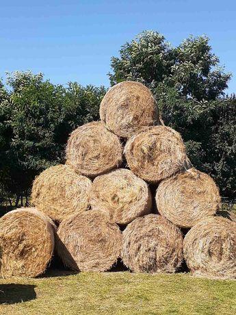 Продаю запашну пшеничну солому