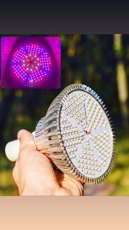 100 Вт/Фитолампа полный спектр E27/фитосветильник/лампа для растений