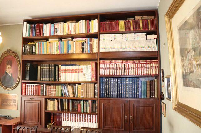 Estante com capacidade para várias centenas de livros (DOU OS LIVROS)