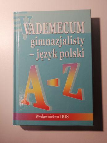 Vademecum gimnazjalisty - język polski