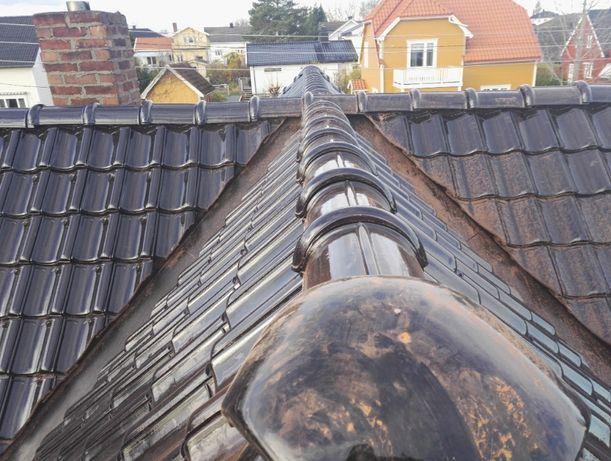 Budowa i remont dachu, budownictwo szkieletowe.