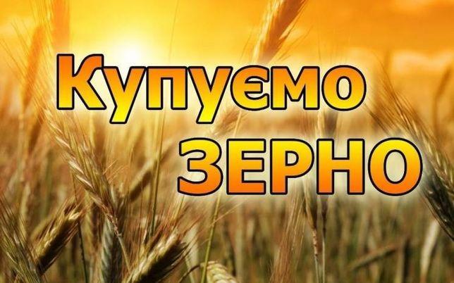 Купуємо зерно ...