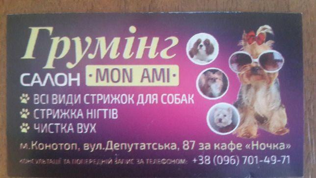 Все виды стрижек для собак !