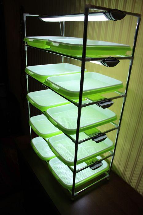 Стойка для выращивания микрозелени в домашних условиях полный комплект Рубежное - изображение 1
