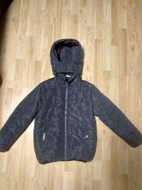 Куртка на теплую зиму демисизоная