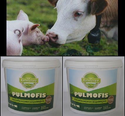 Dodatek paszowy NA KASZEL u bydła, trzody, kur-czosnkowy PULMOFIS 2kg