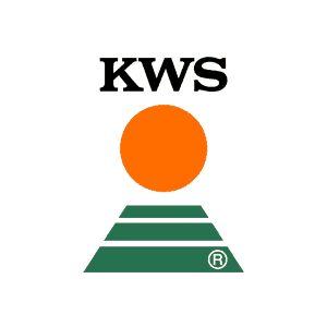 Groch KWS Alvesta/La Mancha C2 od 2029 zł netto/t z dostawą