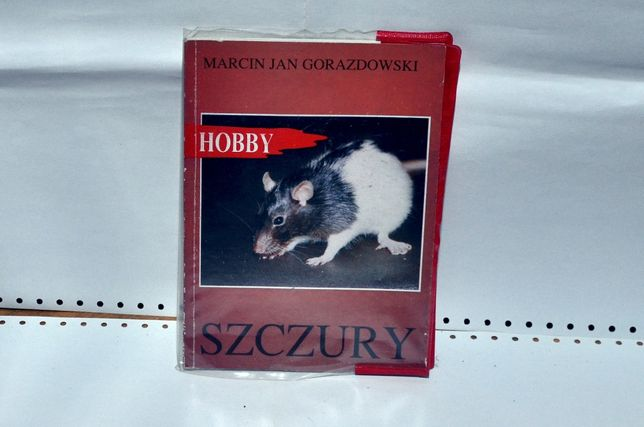 hobby; szczury