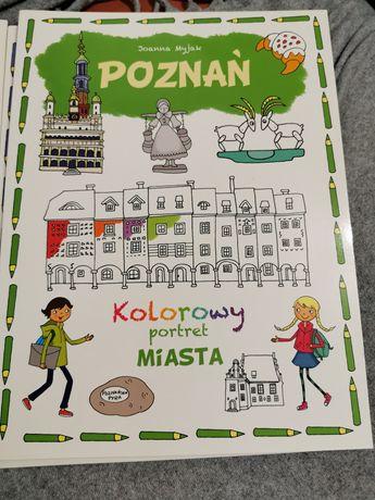 Kolorowy portret miasta Poznań