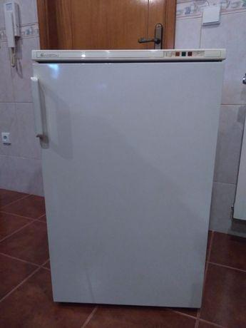 Arca Congeladora Vertical - NOVA