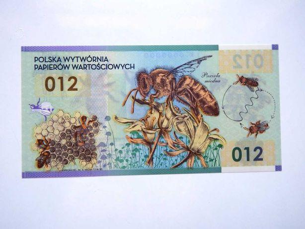 Bankntot testowy NBP Pszczoła Miodna UNC