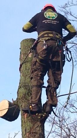 Wycinka, pielęgnacja drzew alpinistycznie, oraz z użyciem podnośnika