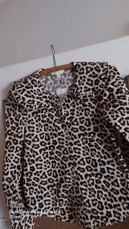 Bluzka panterka XS HM