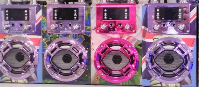 Mini Coluna Musica Amplificada Karaoke Acompanha Microfone e Comando.