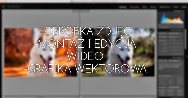 Obróbka zdjęć, montaż i edycja wideo, grafika wektorowa