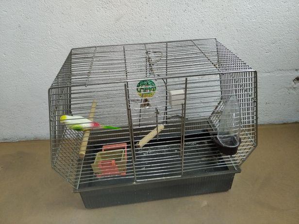 Klatka dla ptaka z akcesoriami