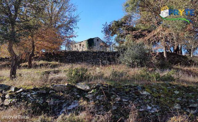Quinta com casas de xistos situada em Ribeira da Várzea - Ped. Pequeno