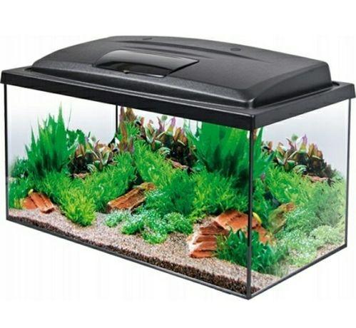 Zestaw akwariowy akwarium Aqua Szut 54 filtr grzałka Aqua4start Aquael