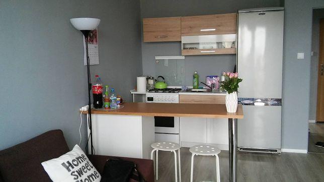 Mieszkanie do wynajęcia od 1 lipca