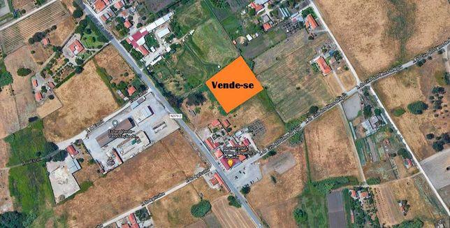 Venda terreno 4200 m2 em Olhos de Água, Pinhal Novo
