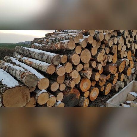 Gorzów Wielkopolski- Drezdenko - drewno opałowe, brzoza, grab, buk