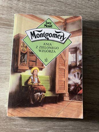Ania z Zielonego Wzgórza, Montgomery