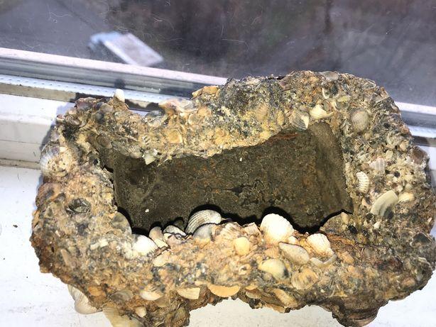 Камень неизвесного происхождения пандора