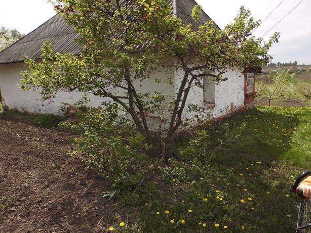 Продам будинок із молодим великим садом