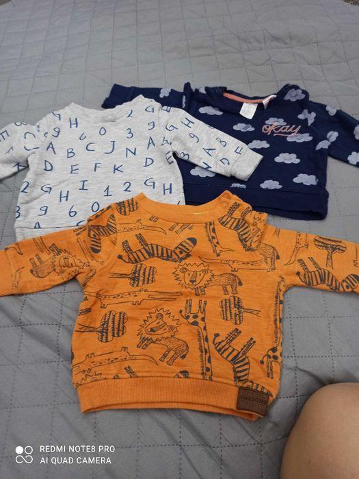 Bluzy dla chłopca rozmiar 62 Świętochłowice - image 1