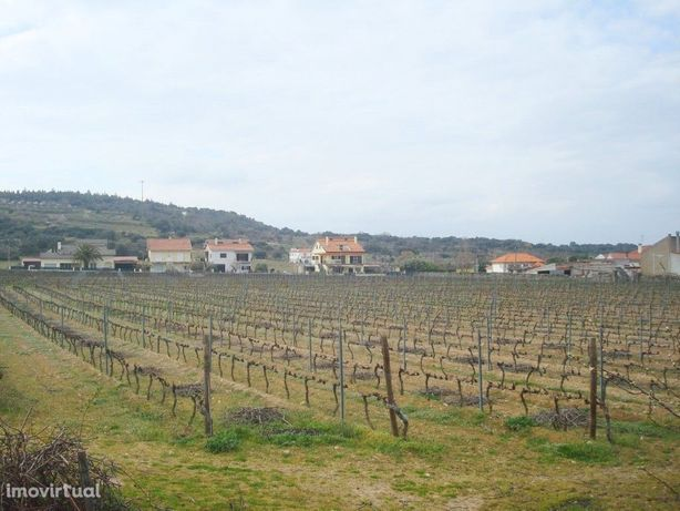 Terreno agrícola situado no douro vinhateiro Vila Nova De...
