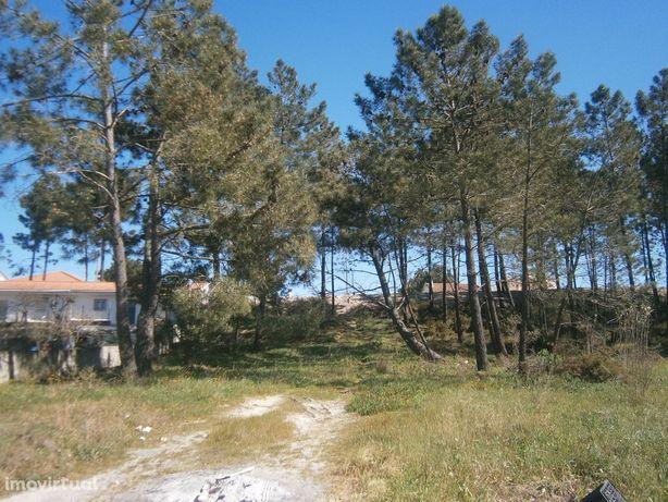 Terreno em Pinhal General,  próximo da Lagoa de Albufeira