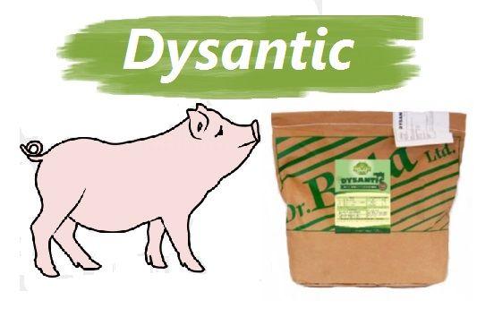 Dysantic na biegunki,dyzenterię u trzody/ziołowa miesznka paszowa 25kg