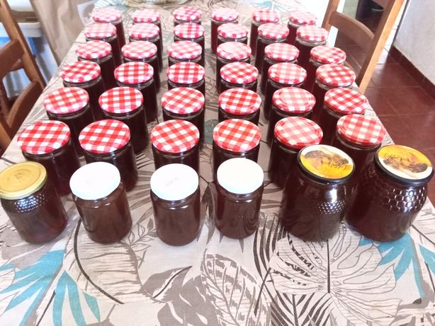 Vendo mel 100% biológico multifloral