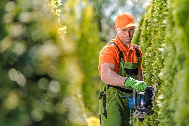 Usługi Ogrodnicze - Projekty - Zakładanie ogrodów