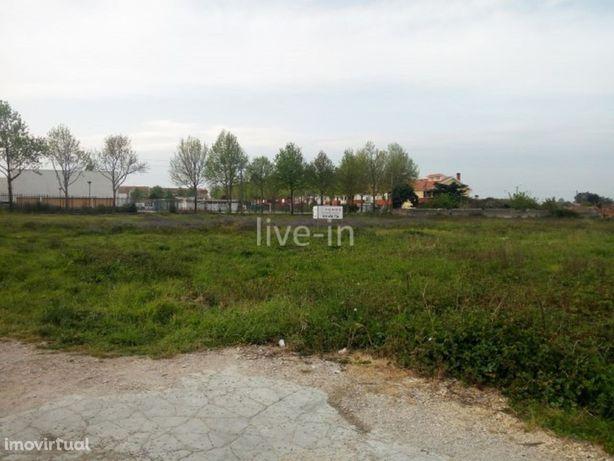 Terreno urbano para construção em Cacia